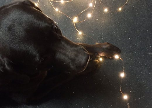 Thor Fairy Lights
