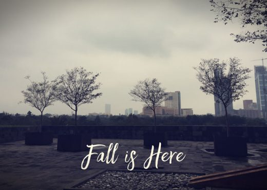 Fall is Here - Malukah Sunday Recap